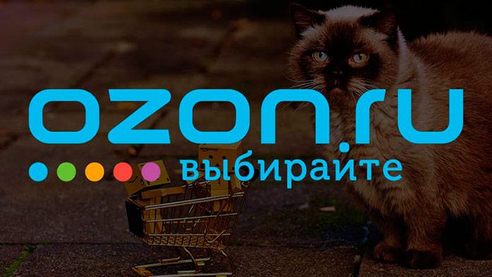 Заработок на партнерской программе Озон.ру